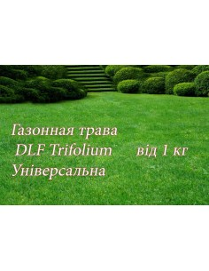 Газонна трава ДЛФ-DLF универсальная, 1 кг