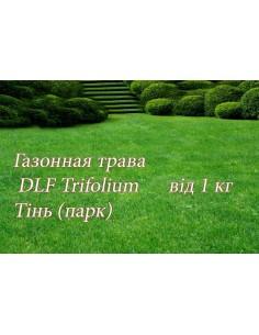 Газонна трава DLF теневая, 1 кг