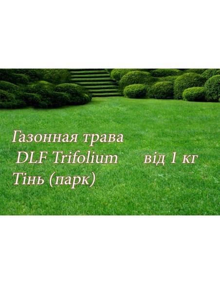 Газонна трава ДЛФ-DLF теневая, 1 кг