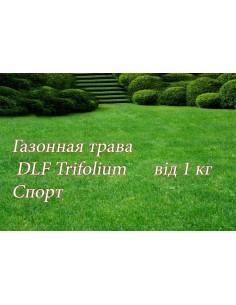 Газонна трава Universal теневая, 20 кг