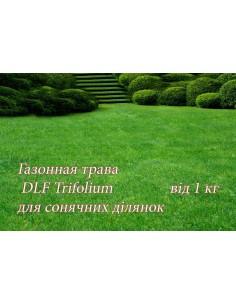 Газонная трава ДЛФ-DLF...
