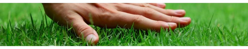 Добрива для газону