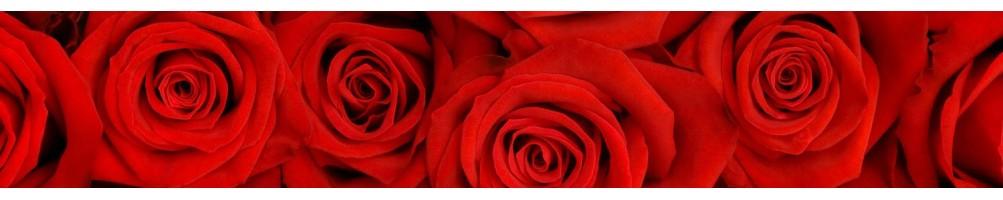 Удобрения для роз та садовых растений